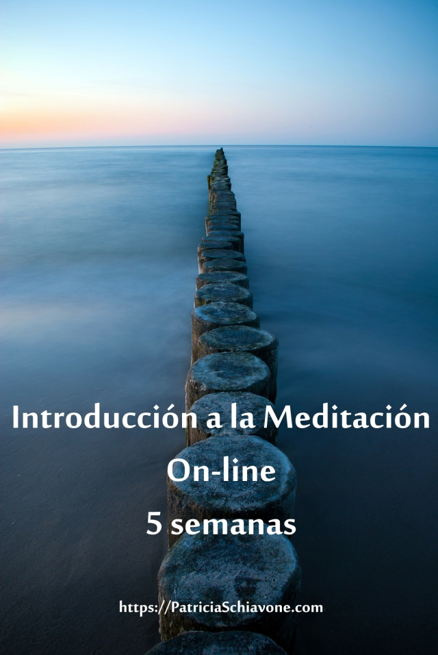 Intro Med on-line copy
